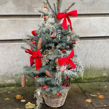 Minixmastree
