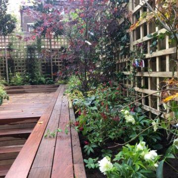 Garden notting hill