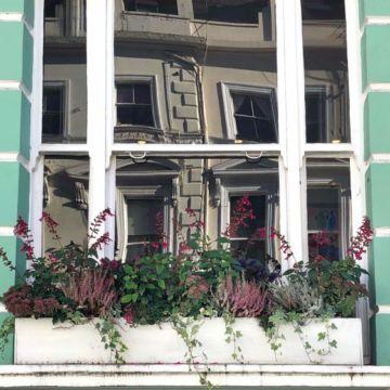 Window box aw 18